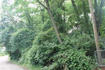 Louisville Residential Lots & Land For Sale: Lot 89 Old Outer Loop