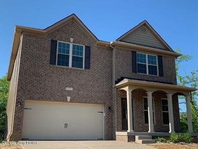 Single Family Home For Sale: 17102 Piton Way