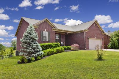Bullitt County Single Family Home For Sale: 472 Benjamin Pl