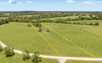 Shelbyville Residential Lots & Land For Sale: Tract 15 Buckley Ln