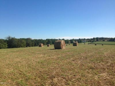 Shelbyville Residential Lots & Land For Sale: 9 Frankfort Rd