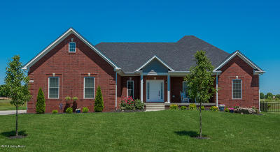 Bullitt County Single Family Home For Sale: 294 Heritage Hill Pkwy