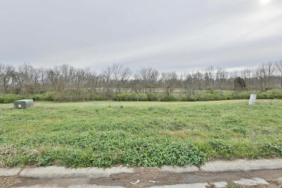 Shelbyville Residential Lots & Land For Sale: 77 Barlows Brook Rd