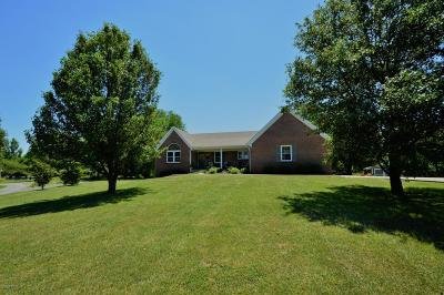 Taylorsville Single Family Home For Sale: 259 Skyline Dr