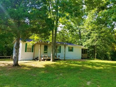 Leitchfield, Falls Of Rough, Mcdaniels, Madrid, Hudson, Rough River, Westview, Axtel, Cub Run, Bee Springs, Mammoth Cave, Wax Single Family Home For Sale: 849 Indian Valley Rd