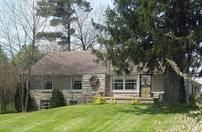 Lebanon Junction, Lebanon Junct Single Family Home For Sale: 176 Paul Harned Rd