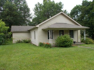 Henry County Single Family Home For Sale: 9057 Main St