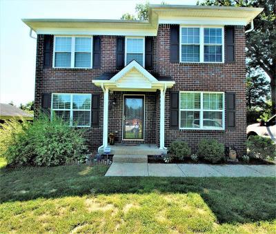 Bullitt County Single Family Home For Sale: 343 Lentz Ln