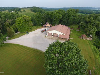 Meade County Single Family Home For Sale: 380 Crosier Rd