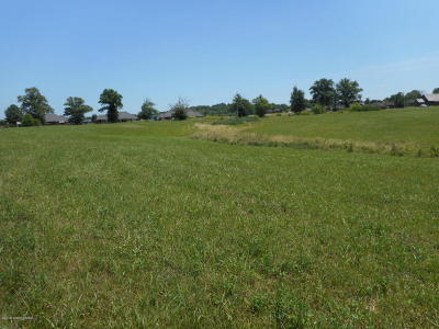 Taylorsville Residential Lots & Land For Sale: 1300 Mt Washington Rd