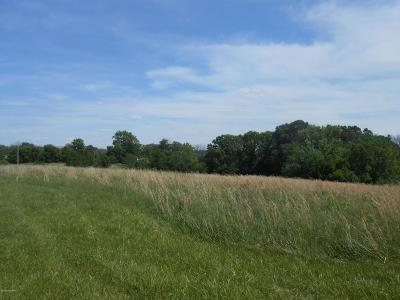 Simpsonville Residential Lots & Land For Sale: 1 Webb Rd