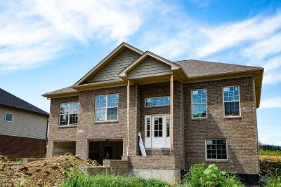 Shelby County Single Family Home For Sale: 64 Imperator Way