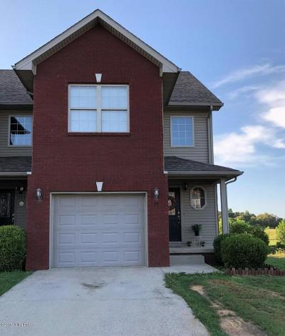 Hardin County Single Family Home For Sale: 175 Twin Lakes Dr