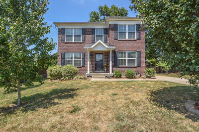Mt Washington Single Family Home For Sale: 343 Lentz Ln