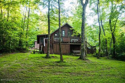Cub Run Single Family Home For Sale: 1330 Robbin Ln