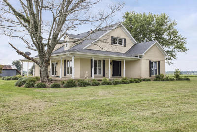 Henry County Single Family Home For Sale: 8095 Maddox Ridge Rd