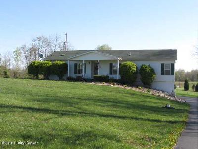 Brandenburg Single Family Home For Sale: 237 Ridge Point Dr
