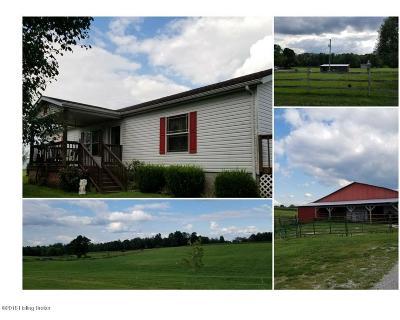 Larue County Single Family Home For Sale: 5314 Munfordville Rd