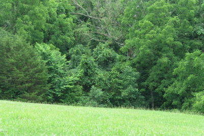 Taylorsville Residential Lots & Land For Sale: 7 Briar Hill Rd