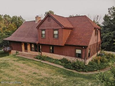 Single Family Home For Sale: 1051 Maddox Ln