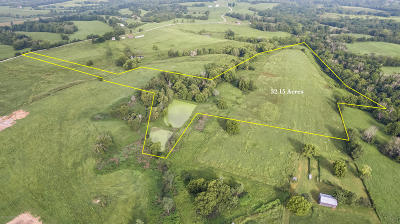 Shelby County Residential Lots & Land For Sale: Tract 10 Buckley Ln