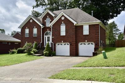 Louisville KY Single Family Home For Sale: $248,000