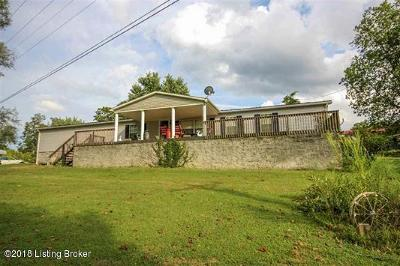 Edmonson County Single Family Home For Sale: 6811 Morgantown Rd