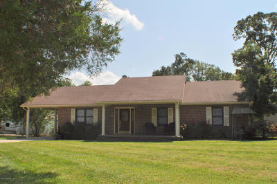 Meade County Single Family Home For Sale: 255 Rock Haven Rd