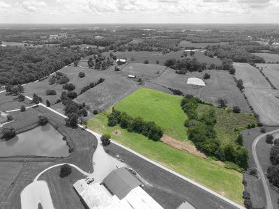 Simpsonville Residential Lots & Land For Sale: 591 Noland Pike #Lot B