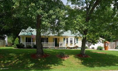 Grayson County Single Family Home For Sale: 418 E Spring St
