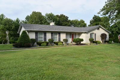 Mt Washington Single Family Home For Sale: 230 Riverview Dr