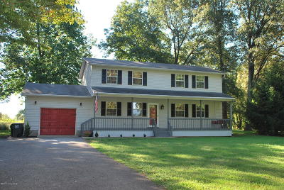 Meade County Single Family Home For Sale: 235 Peaceful Valley Rd