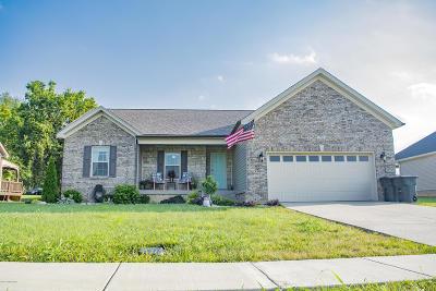 Bullitt County Single Family Home For Sale: 209 Hill Terrace Dr