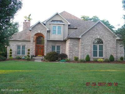 Mt Washington Single Family Home For Sale: 132 Cedar Point Dr