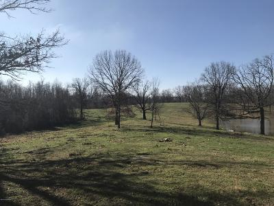 Meade County Residential Lots & Land For Sale: 461 Meade Springs Rd