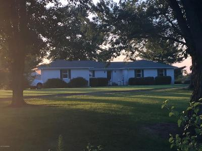 Hardinsburg KY Single Family Home For Sale: $375,000