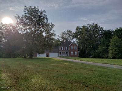 Rineyville Single Family Home For Sale: 162 Delaney Ct