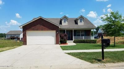 Taylorsville Single Family Home For Sale: 102 Persimmon Dr