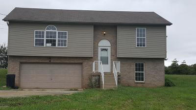 Vine Grove Single Family Home For Sale: 111 Hillview Dr