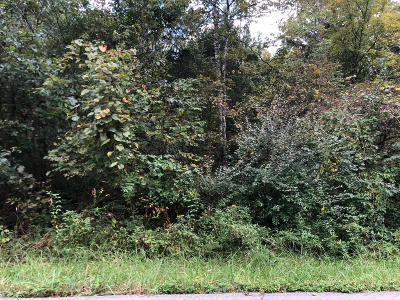 Mt Washington Residential Lots & Land For Sale: Lot 4&5 Hollow Hills Rd