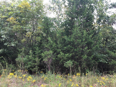 Mt Washington Residential Lots & Land For Sale: Lot 10&11 Hollow Hills Rd