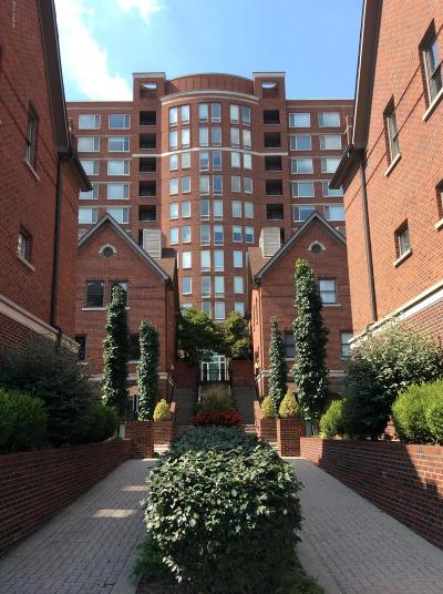 Condo/Townhouse For Sale: 646 S 2nd St #6
