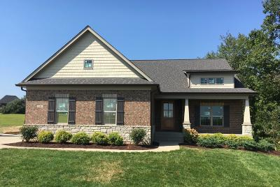 Shelby County Single Family Home For Sale: 141 Gavin Ct