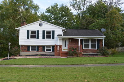 Louisville KY Single Family Home For Sale: $205,000
