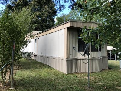 Single Family Home For Sale: 351 Cedar Ln