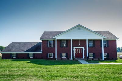 Leitchfield, Caneyville, Clarkson, Big Clifty Single Family Home For Sale: 146 Tana Ln