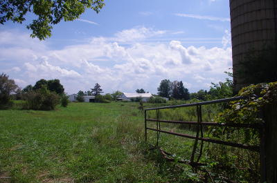 Henry County Residential Lots & Land For Sale: 7576 Ballardsville Rd #Tract 4