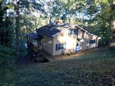 Leitchfield, Caneyville, Clarkson, Big Clifty Single Family Home For Sale: 3115 Lewis School Rd