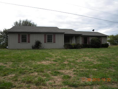 Shepherdsville Single Family Home For Sale: 393 Pendleton Rd
