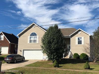 Single Family Home For Sale: 219 Meadowlake Dr